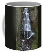 Whistler Waterfalls - Alexander Falls Coffee Mug