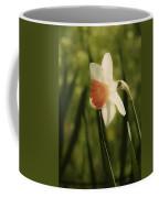 White And Orange Daffodil Coffee Mug