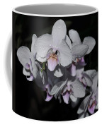 White And Pale Pink Phalaenopsis  165 Coffee Mug
