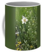 White And Yellow Daffodil Coffee Mug