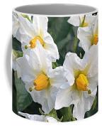 Garden Blossoms White And Yellow Garden Blossoms Coffee Mug