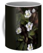 White Anemone Flowers Coffee Mug