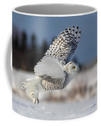 White Angel - Snowy Owl In Flight Coffee Mug by Mircea Costina Photography