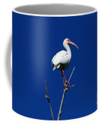 White Beauty Against Blue Coffee Mug