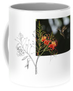 White-bellied Emerald Coffee Mug