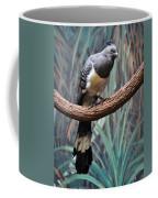 White-bellied Go-away-bird Coffee Mug