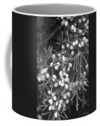 White Berries Coffee Mug