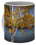 White Birch Tree In Autumn Along The Shore Of Crystal Lake Coffee Mug