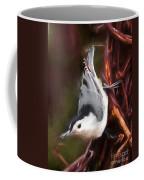 White-breasted Nuthatch - Classic Pose Coffee Mug