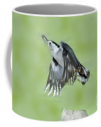 White-breasted Nuthatch Flying With Food Coffee Mug