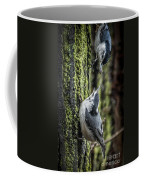 White Breasted Nuthatchs Coffee Mug
