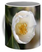 White Camellia  Coffee Mug