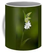 White Campion Flower Coffee Mug by Christina Rollo