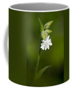White Campion Flower Coffee Mug