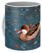 White-cheeked Pintail Coffee Mug
