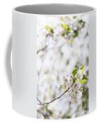 White Cherry Blossom Flowers  Coffee Mug