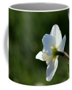 White Daffodil Rear Profile Coffee Mug
