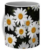 White Daisy's On The Rim Coffee Mug