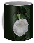 White Datura Coffee Mug