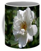 White Dog Rose Coffee Mug