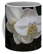 White Dream Orchid Coffee Mug
