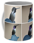 White Eared Male Costa's Coffee Mug