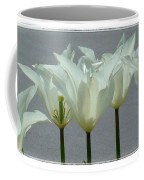 White Early Dawn Tulips White Bordered Coffee Mug