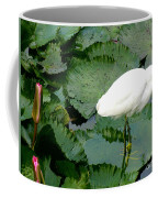 White Egret On Lilypads Coffee Mug
