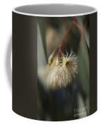 White Eucalyptus  Coffee Mug
