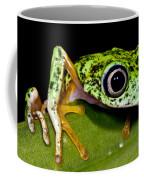 White-eyed Leaf Frog Coffee Mug
