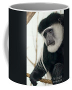 White Faced Monkey Coffee Mug
