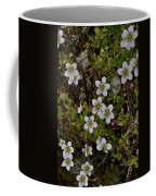 White Flowers And Moss Coffee Mug