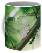 White Frog Coffee Mug