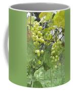 White Graspes Coffee Mug