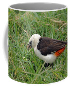 White Headed Buffalo Weaver Coffee Mug