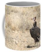 White-headed Vulture  Trigonoceps Occipitalis Coffee Mug