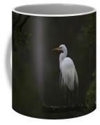 Heron Feathers In A Ruffle Coffee Mug