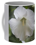 White Hibiscus Squared Coffee Mug