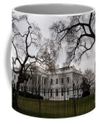 White House On A Cloudy Winter Day Coffee Mug