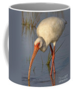 White Ibis In Grass Coffee Mug