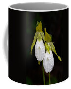 White Lady's Slipper Pair Coffee Mug
