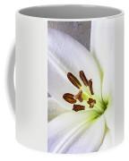 White Lily Close Up Coffee Mug