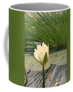White Lily Near Pond Grass Coffee Mug