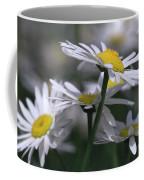 White Marguerite Coffee Mug