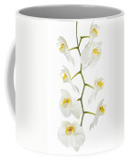 White Orchid-4783 Coffee Mug