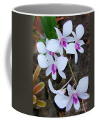 White Orchid Cluster With Hot Pink Coffee Mug