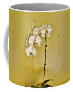 White Orchids Coffee Mug