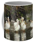 White Pelicans Grooming Coffee Mug