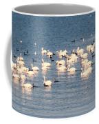 White Pelicans Coffee Mug