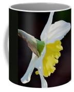 White Petaled Daffodil Coffee Mug